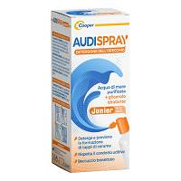 AUDISPRAY JUNIOR S/GAS IG OREC